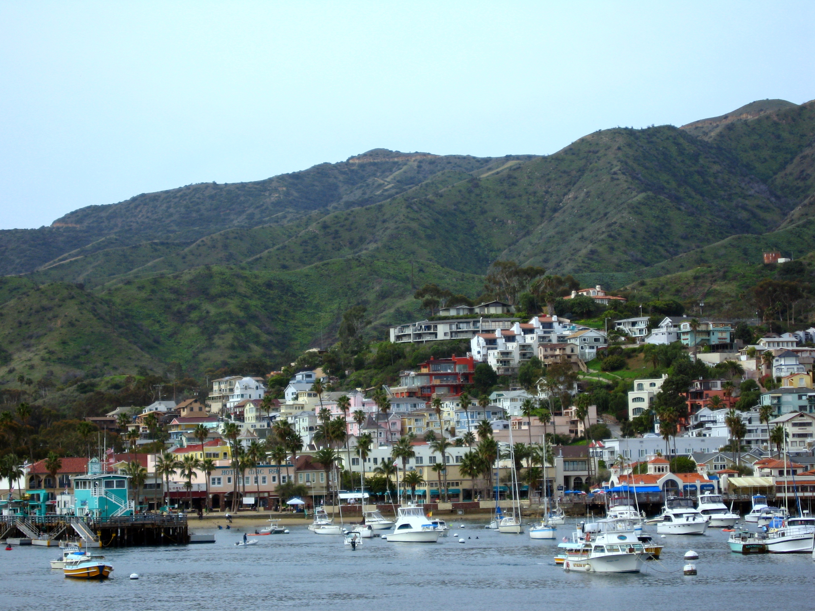 Download this Catalina Island Day Trips From Orange County picture